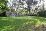 1506 E Poinsettia Ave. Tampa, FL 33612